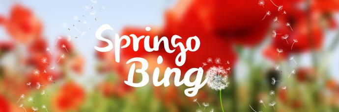 Image result for Springo Bingo